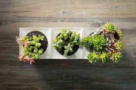 the smart garden meet legrow smart garden system garden culture magazine