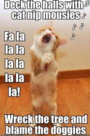 Funny Kitten Meme - funny kitten memes deck the halls with catnip mousies like us