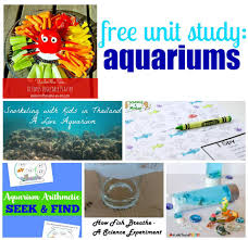 mini aquarium in a bottle ocean sensory play to learn and explore ocean aquarium unit study activities