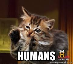Cat Alien Meme - humans ancient aliens cat interview meme generator