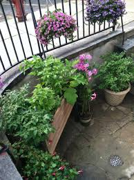 Self Watering Garden Containers Self Watering Containers The Urban Gardener