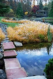 parkfairfax native plant sale brookside gardens visitors center 9 5pm turtle pond garden