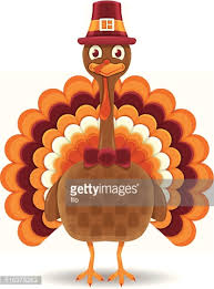 thanksgiving pilgrim and turkey with scroll vector getty images