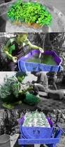 build a hydroponic garden nature technology tickets hossana