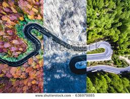 The Summer And Winter Garden - winding road forest autumn summer winter stock photo 636979885