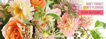 flowers tucson tucson florist flower delivery by flowerbee