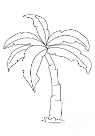 coloring pictures of a palm tree palm tree coloring page heartscollective co