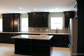 kitchen black cabinets black kitchen cabinets black kitchen cabinets traditional kitchen
