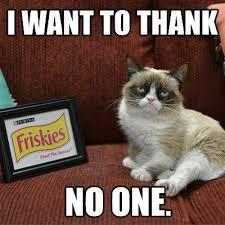 Grumpy Cat Monday Meme - catsparella grumpy cat takes sxsw