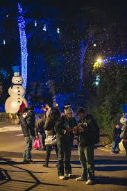 when do the zoo lights start lights wild holiday fun at the san antonio zoo