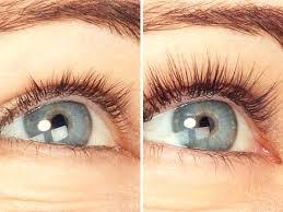 amazon com organys eyelash u0026 eyebrow growth serum high potency