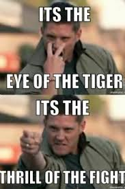 Eye Of The Tiger Meme - national kick butt day