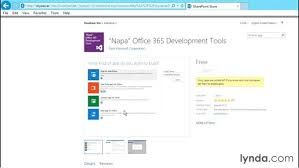 using the developer site template
