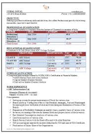 Sample Resume Professional by Sample Resume For It Professionals Movie Essay Topics
