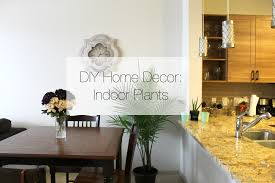 Home Interior Plants by Diy Home Decor Indoor Plants Youtube