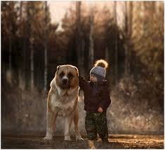 art symphony magical pictures of two kids with animals on a farm