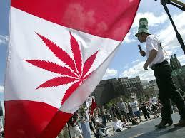 Colorado Flag Marijuana Canadians Spending Nearly As Much On Marijuana As Wine Shows