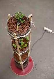 Urban Herb Garden Ideas - 308 best jardins urbains urban farming images on pinterest