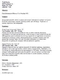 resume format for mis profile resume samples mis executive resume ixiplay free resume samples