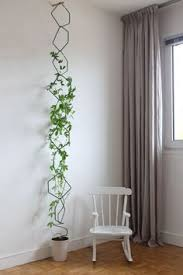 Home Design Reddit See Why Reddit Is Freaking Out Over This Apartment Houseplants