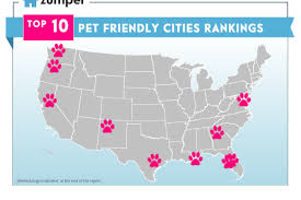 Florida Map Cities The 5 Most Pet Friendly Cities In Florida Curbed Miami
