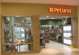petland twelve oaks mall