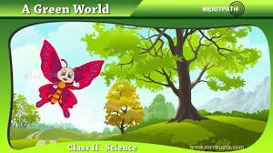 class ii science green world trees shrub climbers creepers