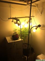 Cool Small Palnts To Grow How To Inexpensively Cool A Small Grow Box