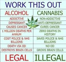 Legalize Weed Meme - tunisia social media caign to legalize marijuana underway