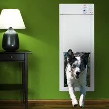 amazon com power pet large electronic pet door px 2 pet doors