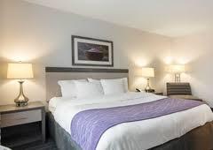 Comfort Inn Bypass Road Williamsburg Va Comfort Inn Williamsburg Gateway Williamsburg Va 23185 Yp Com
