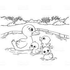 cartoon duck lake coloring page vector stock vector art 821275468