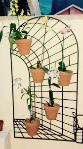 67 best orchid designs using hangapot the favorite hanger of