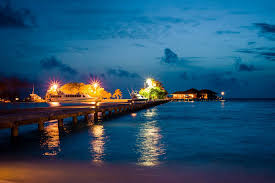 paradise island sun safaris