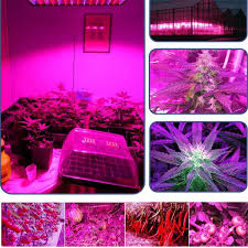 hydroponic led grow lights wish excelvan 45w 225 led plant growing l greenhouse indoor