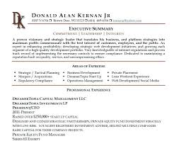 summary for resume summary for resumes executive summary resume business development