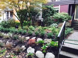 North Facing Backyard Gallery Real Life Garden Solutions