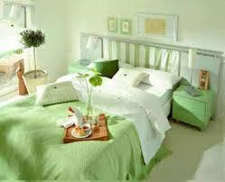 Zebra Print Bedroom Ideas For Teenage Girls Bedroom Ideas For Teenage Girls Green Colors Theme Then Clipgoo