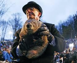 groundhog 2016 punxsutawney phil shadow nj
