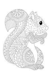 Coloriage à imprimer danimaux  lécureuil  Pencil Drawings