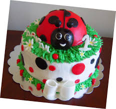 ladybug birthday cake icing makes the cake bug 1st birthday cake