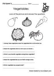 free printable evs worksheets for class 1 mediafoxstudio com