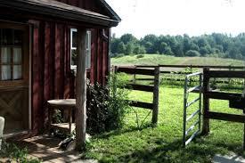 pet friendly cabins in tri state area