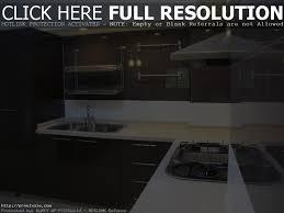 modern contemporary kitchen cabinets modern design ideas