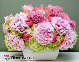 local florists bloomnation a platform for local florists raises 1 65m from