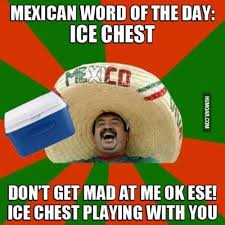 Funny Mexican Memes - pin by marlene courvelle on mexican words pinterest mexican