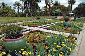 australian native plants for rock gardens video and photos the huntington in san marino has 12 botanical gardens on 120 acres