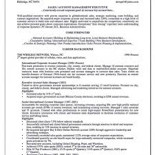 resume format for senior accounts executive in seksyen resume format for senior accounts executive in word free template