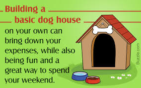 a visual guide on how to build a dog house in 8 simple steps