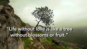Nature Love Quotes by Kahlil Gibran Quote On Love Youtube